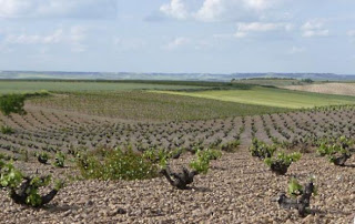 Brevísima historia del vino madrileño, 2.
