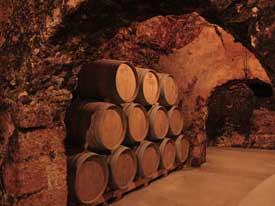 Brevísima historia del vino madrileño, 1